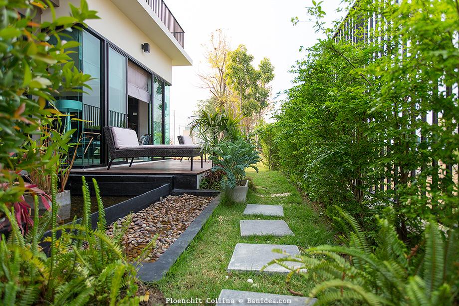 สวนหลังบ้าน ทาวน์โฮม
